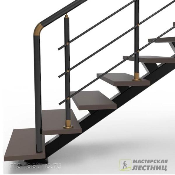 Лестница на монокосоуре-02